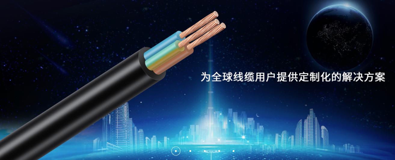 广东日丰电缆股份有限公司